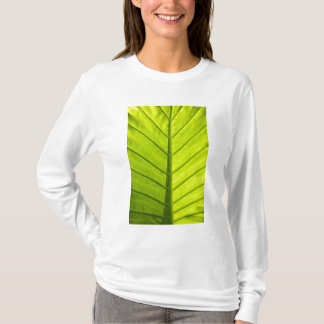 Green veined leaves of tropical foliage in T-Shirt