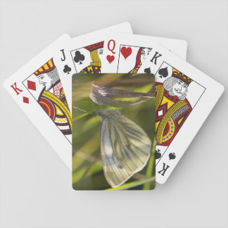 Green-veined White Butterfly Playing Cards