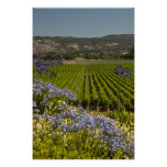 Green Vineyard and Purple Flowers Poster