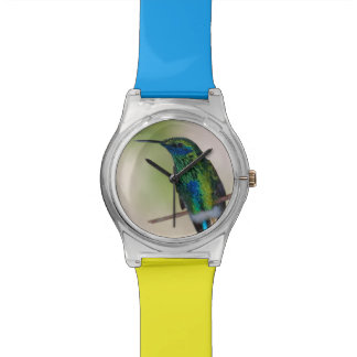 Green Violet-ear Hummingbird Wristwatch