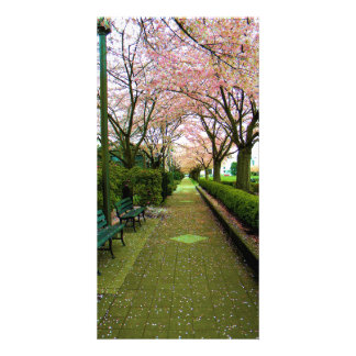 Green Walk Picture Card