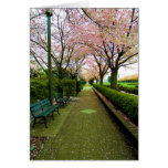 Green Walk Stationery Note Card