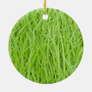 Green wet grass design ornaments