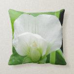 Green & White Pillow ~ original high res photo