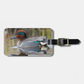 Green-winged Teal Luggage Tag
