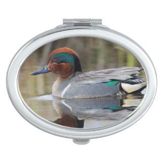Green-winged Teal Vanity Mirror