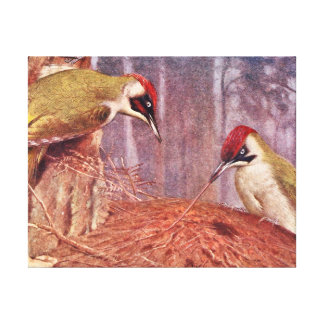 Green Woodpecker Couple Eating Ants Canvas Print