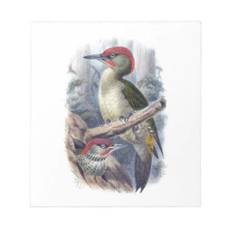 Green Woodpecker Notepad