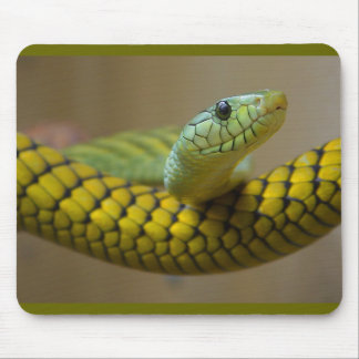 GREEN YELLOW SCALED SNAKE REPTILE PHOTOGRAPHY MOUSE PAD