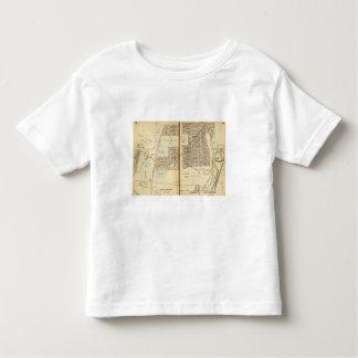 Greenburg, New York 10 Toddler T-Shirt