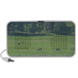 Greener Pastures Speaker