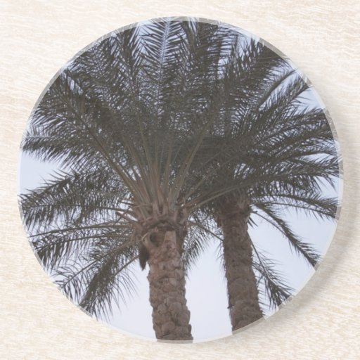 Greenery of palm trees beverage coasters