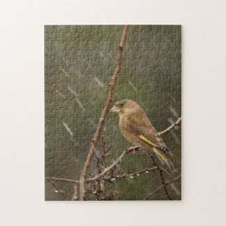 Greenfinch Jigsaw Puzzle