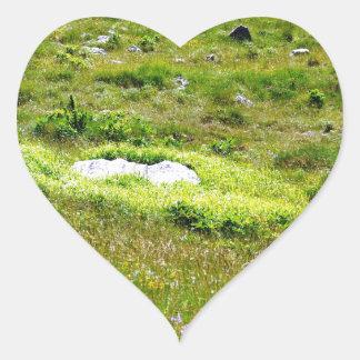 Greenheart Heart Sticker
