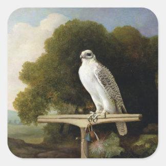 Greenland Falcon (Grey Falcon), 1780 (oil on panel Square Sticker