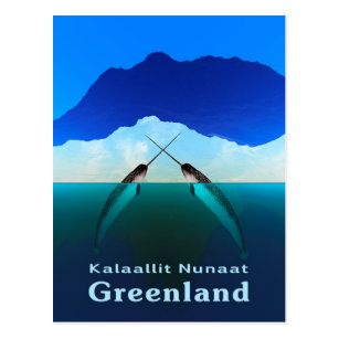 Greenland - Narwhal Postcard