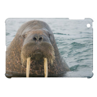 Greenland Sea, Norway, Svalbard Archipelago iPad Mini Case