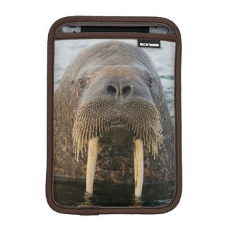 Greenland Sea, Norway, Svalbard Archipelago iPad Mini Sleeve