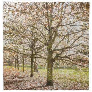 Greenwich Park London Art Napkin