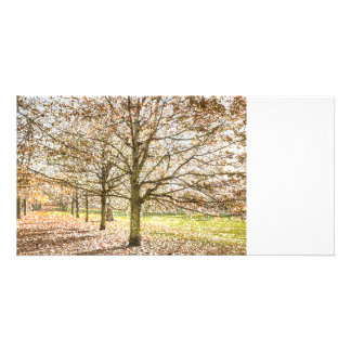 Greenwich Park London Art Photo Greeting Card