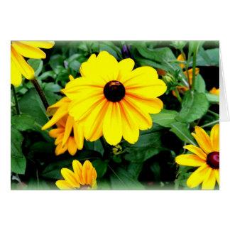 Greeting Card: Black-Eyed Susan Flowers Greeting Card