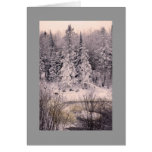 Greeting card, blank, with Snow Scene