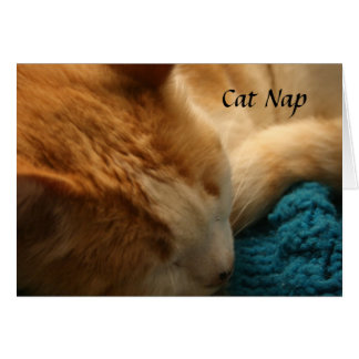 Greeting Card: Cat Nap Card