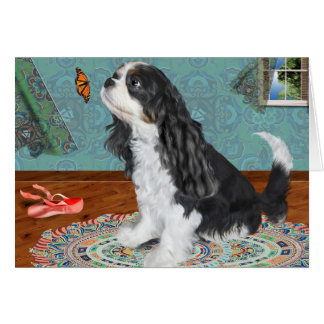 Greeting card, cavalier spaniel, tri-colored card