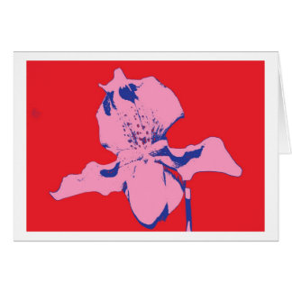 Greeting Card Flowers Orchid