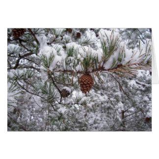 Greeting Card - Winter Pine