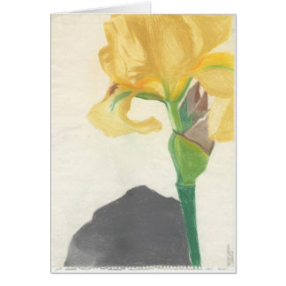 "Greeting Cards with ""Yellow Iris"" by Amber Larsen"