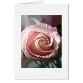 Greeting map pink rose card