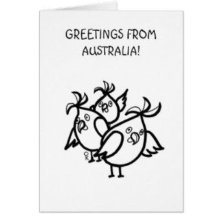 GREETINGS FROM AUSTRALIA Cockatoos Greeting Card