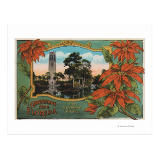 Greetings from Florida the Sunshine State Postcard