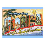 Greetings from Florida - Vintage Travel Post Card