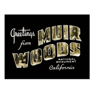 Greetings from Muir Woods National Monument Postcard
