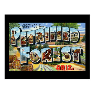 Greetings from Petrified Forest Arizona Postcard