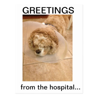 Greetings! from the hospital.. postcard