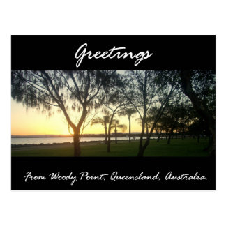 Greetings From Woody Point Postcard