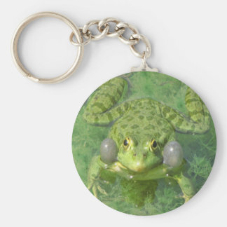 grenouille frog peace joy keychains