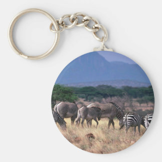 Grevy's Zebra - Mixed With Smaller Burchell's/Gran Basic Round Button Key Ring