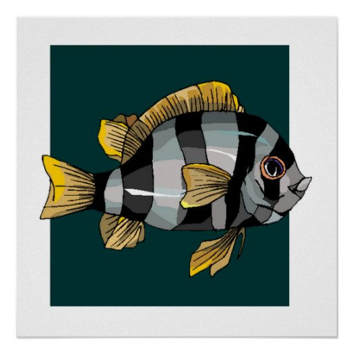 Grey And Black Striped Fish Poster