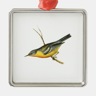 Grey-backed Warbler Bird Illustration by William S Christmas Ornament