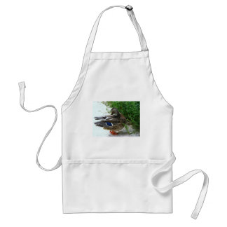 Grey Bird with Blue on Feather and Orange Feet Standard Apron
