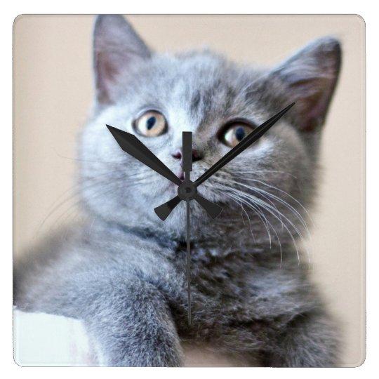 Grey British Shorthair Cat Square Wall Clock