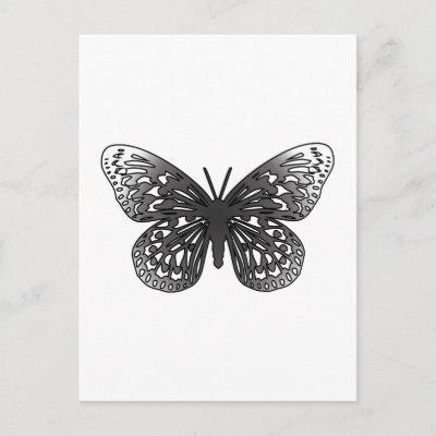 grey_butterfly_postcard-p239857642571069371baanr_400.jpg