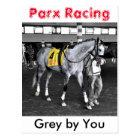 Grey by You Postcard