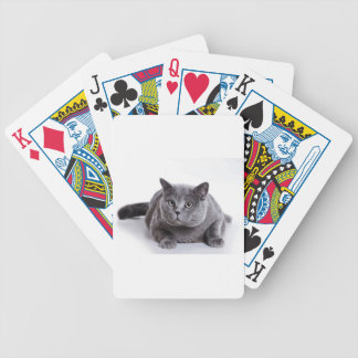 Grey Cat Bicycle Playing Cards