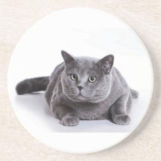 Grey Cat Coaster