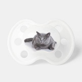 Grey Cat Dummy